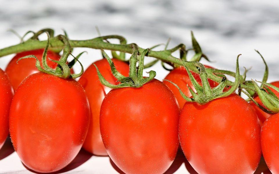 Confitura conserves tomatiga